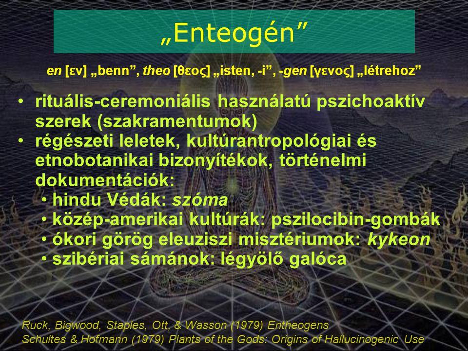 """en [εν] """"benn , theo [θεος] """"isten, -i , -gen [γενος] """"létrehoz"""